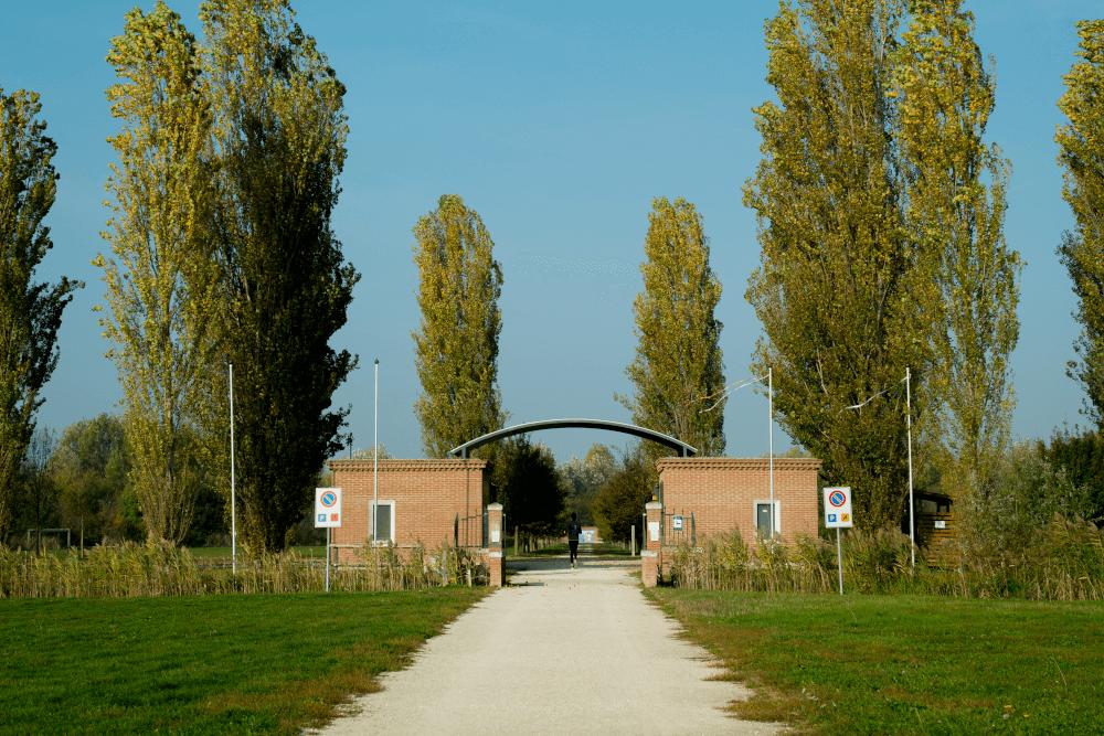 Foresta della Carpaneta Comune San Giorgio Bigarello
